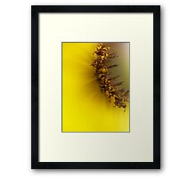 The Color of Happiness Framed Print