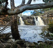 Turpin Falls with trees by Lozzar Landscape