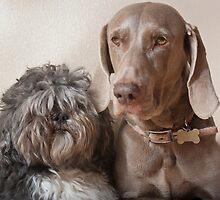 Best Friends by gazmercer