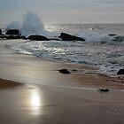 Indian Ocean, Yala, Sri Lanka by Nirmal  Ghosh
