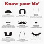 Moustache Guide by alprideaux