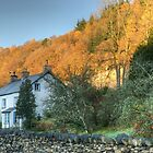The Cottage Opposite The Village Shop by Jamie  Green