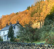 The Cottage Opposite The Village Shop by VoluntaryRanger