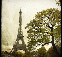 Autumnal Paris by Marc Loret