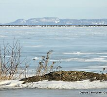 Winter on the Lake by Ravred