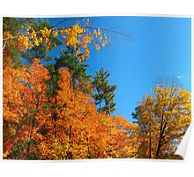 Hip Hip Hooray for Autumn! Poster