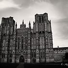 Wells Cathedral by Nicole Shea