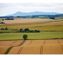 Ripening Harvest by R John Hughes
