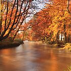 Autumn colour. by Fred Taylor