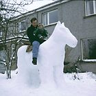 The Snow Horse  by R John Hughes