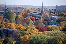 Autumn Poughkeepsie NY by John Schneider