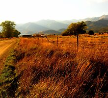 Road to the Mountains by JoAnn Glennie