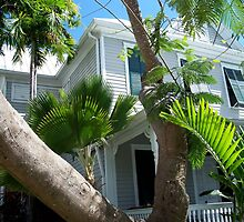 Key West Florida House with Palms by Rick Short