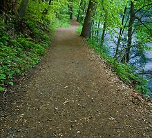 Hiking Trail by the River by Michael Mill