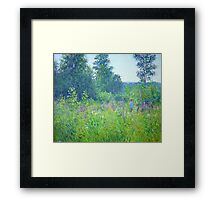 Alex in the field Framed Print