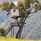Casa de arbol by ammit