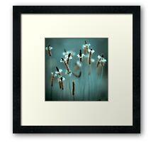 ...sparklers... Framed Print