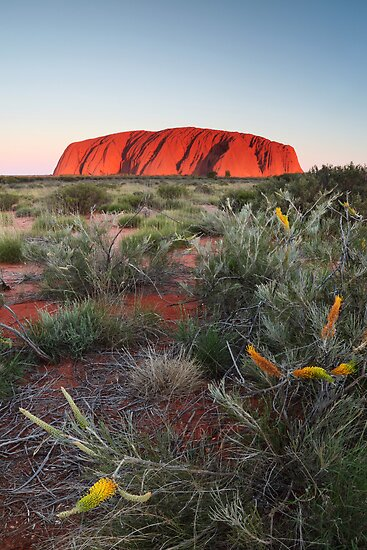 Uluru in the setting sun by Harley Kingston