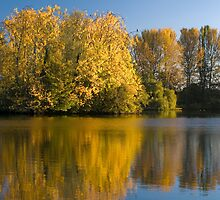 Autumn Reflections by StephenRB