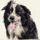 Collie by L K Southward