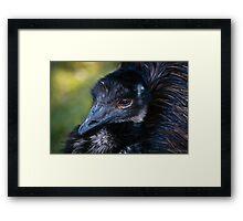 Emblematic Bird Framed Print