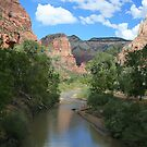Virgin River by Allen Gaydos