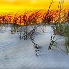 sunset on Seabrook Island by Gerry Daniel