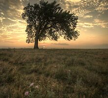 Warmth Fades - Kansas Prairies by Evan Ludes