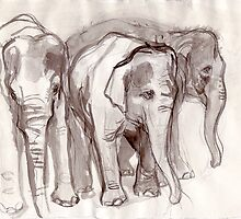 Elephant Line by WoolleyWorld