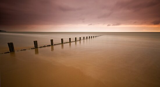 Fading Light by Mark Robson