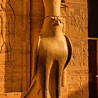 Horus by Paul Tait