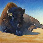 Buffalo by Greg  Marquez