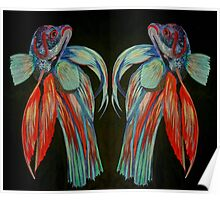 Betta Spendens - In Reflection Poster