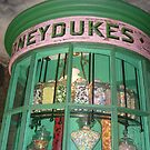 Honeyduke's, at the Wizarding World of Harry Potter by cherigrace