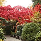 Butchart Gardens : Japenese Garden by AnnDixon