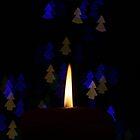 Seasonal Bokeh by Roddy Atkinson