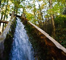 Bud Ogle's Water Flume by Phillip M. Burrow