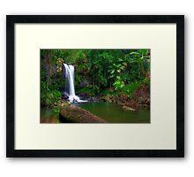 Curtis Falls - Tamborine Mountain Framed Print