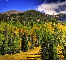 Fall on the Mountain  by Saija  Lehtonen