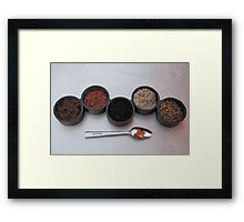 Salts of the Earth Framed Print