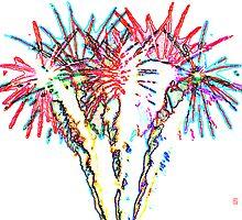 Psychedelic firework by Heike Schenk Arena