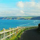 North of Tintagel by trish725