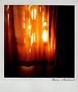 Curtain 2 Polaroïd by Laurent Hunziker