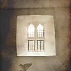 Cry for Freedom, Bird and window by pixel8it