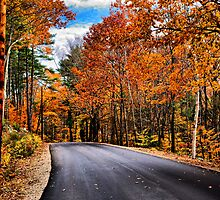 NH Autumn Road 1 by Edward Myers