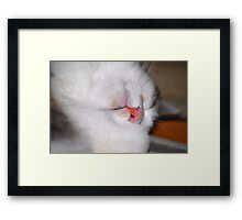 Guess who is sleeping - Nellie Framed Print