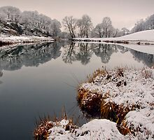Winter views of the river Brathay  by Shaun Whiteman