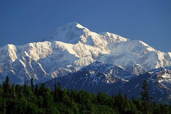 Mount McKinley / Denali ~ Alaska by Barbara Burkhardt