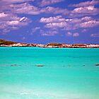 Paradise Island by Carol Barona