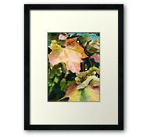 Autumn Farewell Framed Print